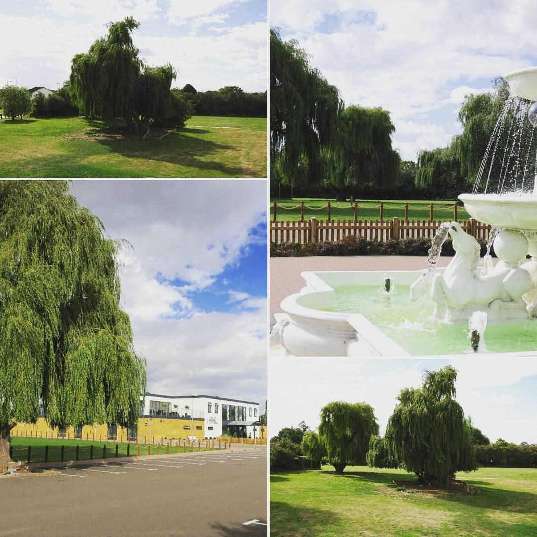 The Willows Event Venue Hire Ilford Essex Tagvenue Com