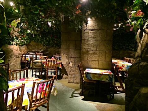 Rainforest Cafe London Prices